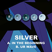 In the Begining by Silver