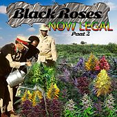 Black Roses Now Legal, Pt. 2 by Various Artists