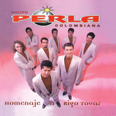 Play & Download Homenaje A Rigo Tovar by Grupo Perla Colombiana | Napster