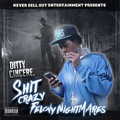 Shit Crazy Felony Nightmares by Ditty Cincere