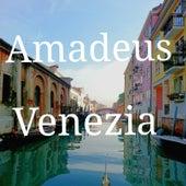 Venezia by Amadeus