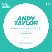 From This Groove EP by Andy Taylor
