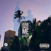 Drive Me Wild by Kaia