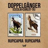 Rupicapra Rupicapra by Doppelgänger