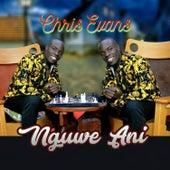 Nguwe Ani by Chris Evans