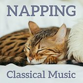 Napping Classical Music by Various Artists