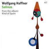 Salinas by Wolfgang Haffner with Jan Lundgren, Sebastian Studnitzky, Daniel Stelter