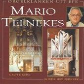 Orgelklanken uit Epe by Mario Telnekes