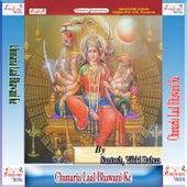 Chunaria Laal Bhawani Ke by Various Artists