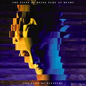 The Echo of Pleasure by The Pains of Being Pure at Heart