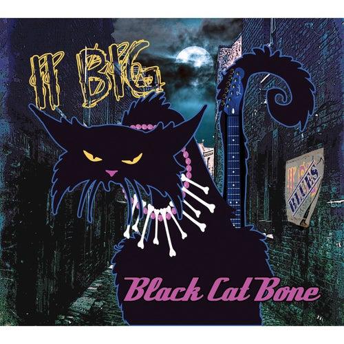 Black Cat Bone by II Big
