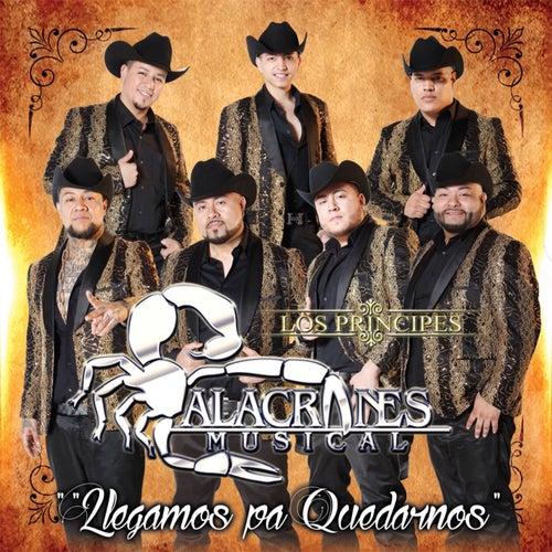 Llegamos Pa Quedarnos by Alacranes Musical
