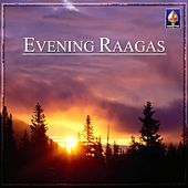 Evening Raagas by Various Artists