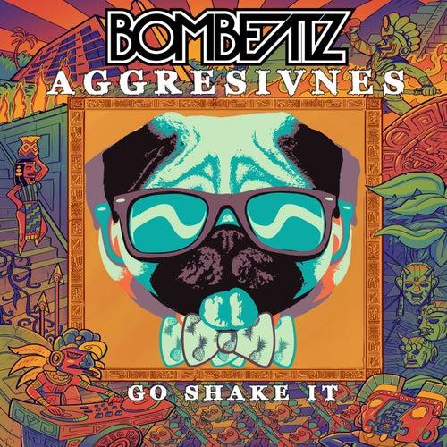 Go Shake It by Aggresivnes