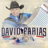 Volando Alto by David Farias