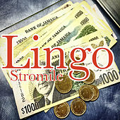 Lingo by Stromile