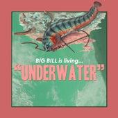 Underwater by Big Bill