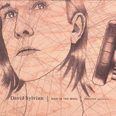 Died In The Wool - Manafon Variations by David Sylvian