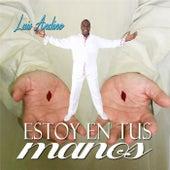 Estoy en Tus Manos by Luis Andino