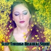 Sleep Through Binaural Sound by Binaural Beats Brainwave Entrainment