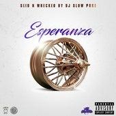 Esperanza (Slid N Wrecked) by David G