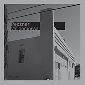 Play & Download Valldemossa by Pezzner | Napster