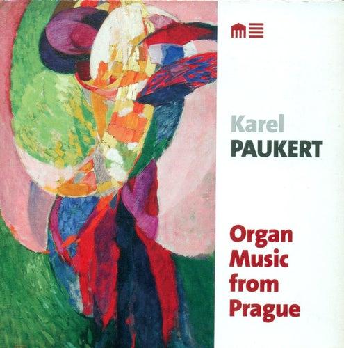 Play & Download Organ Recital: Paukert, Karel - DVORAK, A. / FOERSTER, J.B. / JANACEK, L. / KLICKA, J. / NOVAK, V. / WIEDERMANN, B.A. by Karel Paukert | Napster