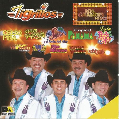 Los Grandes del Baile by Los Tigrillos