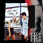 What We're Looking For de XYLØ