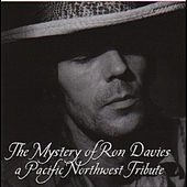 The Mystery of Ron Davies by Various Artists