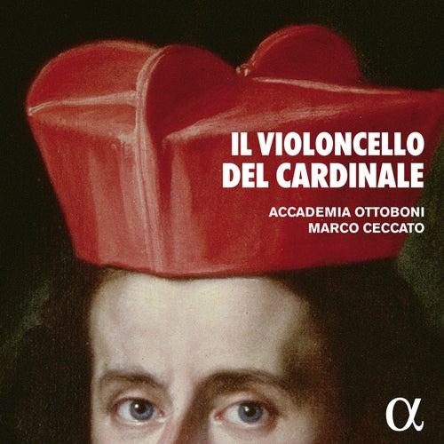 Il violoncello del cardinale by Marco Ceccato