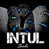 Intul by Snake