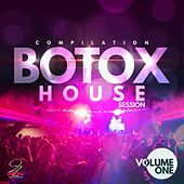 Botox House Session, Vol. 1 by Various Artists
