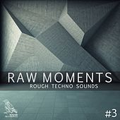 Raw Moments, Vol. 3 - Rough Techno Sounds von Various Artists