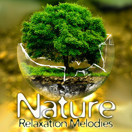 Nature Relaxation Melodies – Easy Listening, Soothing Sounds, Peaceful Nature Sounds, Waves to Calm Down by Nature Sounds (1)