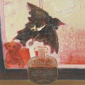 Artbreak de Konrad