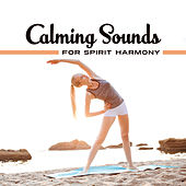 Calming Sounds for Spirit Harmony – Easy Listening, Stress Relief, Meditation Sounds, Peaceful Spirit Journey by New Age
