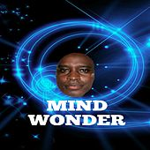 Mind Wonder by Mathis Thomas