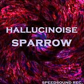 Hallucinoise by Various Artists