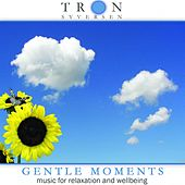 Gentle Moments by Tron Syversen