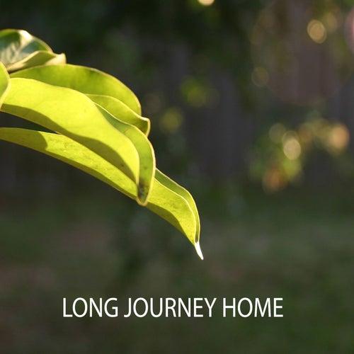 Long Journey Home by Matt Campbell