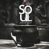 Soul Proprietor by Echo
