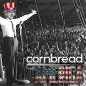 America by Cornbread