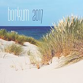 Borkum 2017 by Various Artists