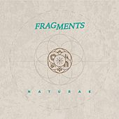 Naturae by Fragments