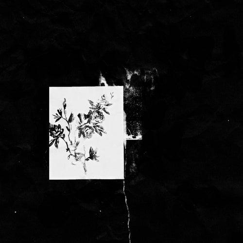 Zaman, Zaman Remix - Single by Trees