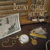 Destiny Takes Her Time by David Ward
