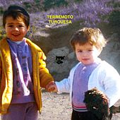 Terremoto Turquesa de Various Artists