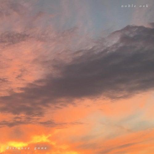 Distance Gone by Noble Oak