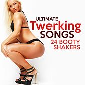 Ultimate Twerking Songs: 24 Booty Shakers by Various Artists
